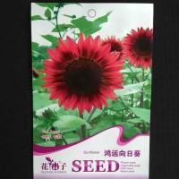 harga Fortune Sunflower Tokopedia.com