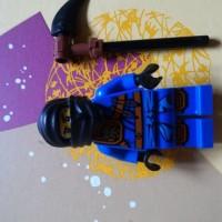 Lego Ninjago ninja assasin ninjutsu