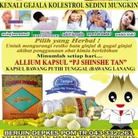 allium kapsul,kapsul ekstrak bawang tunggal tiongkok,sudah terbukti khasiatnya!