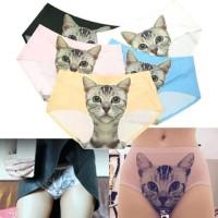 celana dalam motif cat & flower