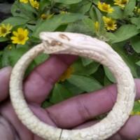 gelang akar bahar putih ukir naga