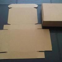 Kardus tambahan packing untuk melindungi produk