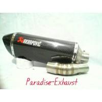 Knalpt Akrapovic Karbon Slip On buat Yamaha R25 / MT25