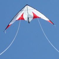 Stunt Kite with Lines & Straps | Layang Layang Akrobat