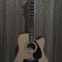 Gitar Cole clark australia neck maple
