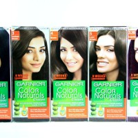 Cat Rambut Garnier Color Naturals Cream