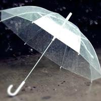 Jual Payung Transparan Murah