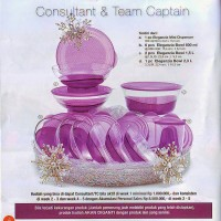 ELEGANZIA SET ACTIVITY TUPPERWARE
