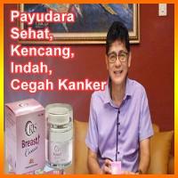 ORIS Payudara Kencang, Indah & Cegah Kanker Rekomendasi BOYKE