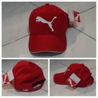 Topi Puma