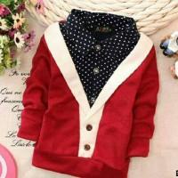 B200538 -#Kid Sw Hary 51.000 / Sweater Anak