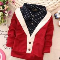 Cvi_Kid Sw Hary / Sweater Anak Laki Laki