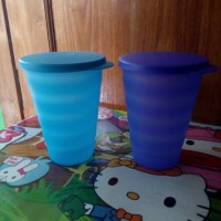 harga EXPRESSION TUMBLER (2)TUPPERWARE Tokopedia.com