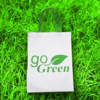 Tas Spunbond Ramah Lingkungan Go Green Goodie Tote Bag Belanja Shop