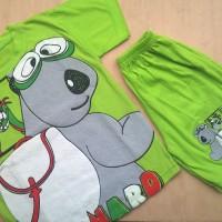 Baju Setelan Anak Laki Boy Cowok Import Kaos Celana 5th Bernard Bear
