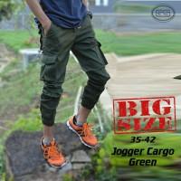 harga Celana Jogger Kargo Hijau-Green Cargo Joger-PDL-Big Size-Jumbo Tokopedia.com