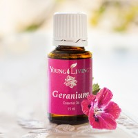 Essential Oil Young Living Geranium 15ml
