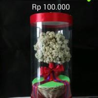 harga Bunga Edelweis Tabung Tokopedia.com