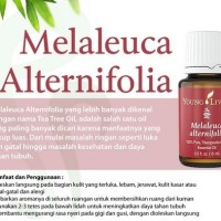 Young Living - Melaleuca Alternifolia (Tea Tree ) - 5Ml Murah