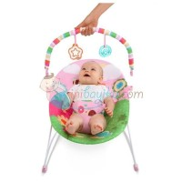 Bright Starts Bouncer Pretty In Pink Sweet Bees And Buggies Color Full