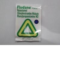 FLUDANE FORTE / STRIP ISI 4