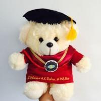 Boneka Wisuda Puffy Bear 30cm (bordir nama)