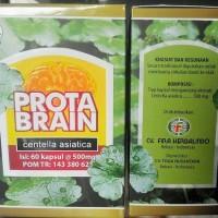 Protabrain, Prota Brain, Herbal nutrisi otak vitamin kecerdasan otak
