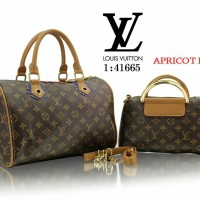 Tas Louis Vuitton LV SPIDY SET SERI 41665