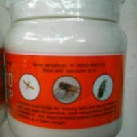 larva lalat cynoff