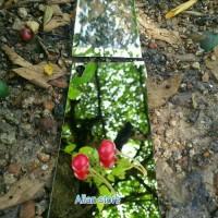 Jual Tempered mirror glass SONY Xperia Z,Z1,Z2,Z3,Z3+,Z5 Murah