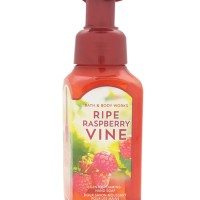 Hand Soap Gentle Foaming - Ripe Raspberry Vine