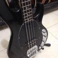 harga bass musicman stingray Tokopedia.com