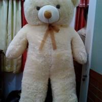 Jual boneka panda / teddy bear jumbo murah uk 1meter Murah