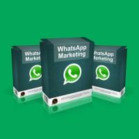Harga Whatsapp Web For Pc Hargano.com