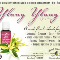 Young living Ylang Ylang