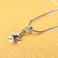 Kalung Wanita Liontin Bintang Pendant Necklace Silver / Titanium Steel
