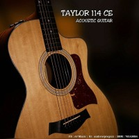Acoustic Electric Guitar Taylor 114CE Grand Auditorium