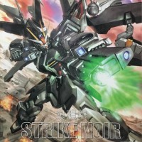 Gundam Strike Noir MG 1/100 Hongli