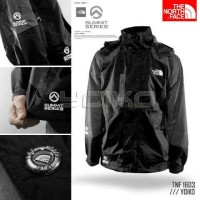 the north face original summit series 1603 usa import
