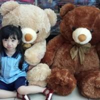 boneka teddy bear besar /jumbo pita