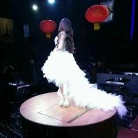 [FOTO ASLI] Gaun Pengantin Wedding Dress Sweet 17 Ekor Tail