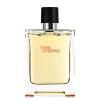 Hermes Terre D'Hermes Men EDT 100ml
