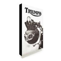Poster Art Triumph #01