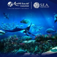 Harga tiket s e a aquarium singapore sea adt | antitipu.com