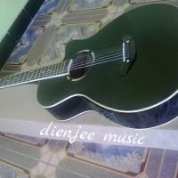 Gitar Akustik APX preamp FISHMAN PRESYS +