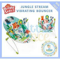 Bright Starts Jungle Stream Vibration Bouncer