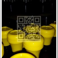 CB2743x | Gagang Stempel Flash / Instan / Warna | Kotak 27 x 43