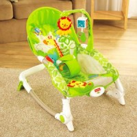 BOUNCER Fisher Price Newborn To Toddler Rocker