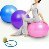 harga Gym Ball Bola Fitnes 65cm Gratis Pompa Tokopedia.com