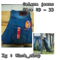 Celana jeans dieckies
